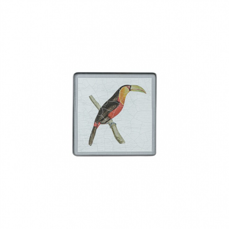 Square coaster, Toucan on silver leaf