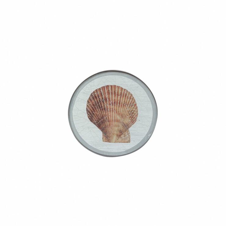 Round Coaster, Shells on silver leaf