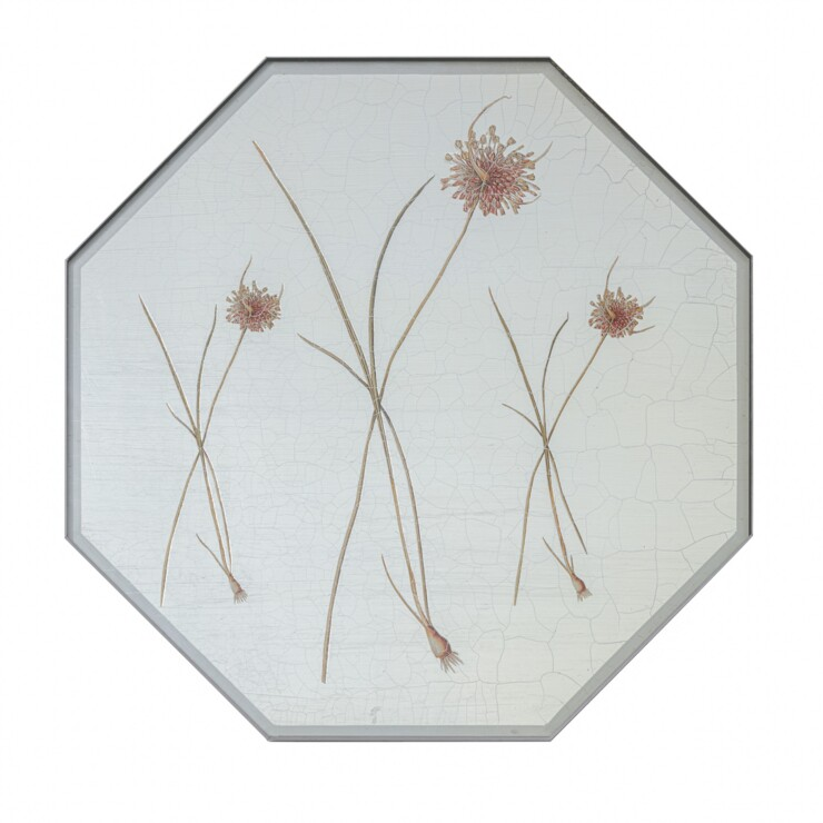 Large Octagonal Tablemats, Allium on silver leaf